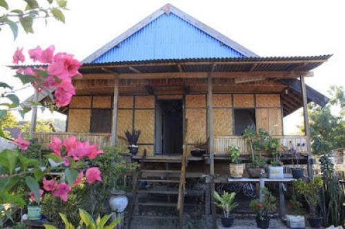 Davi Homestay Pulau Moyo