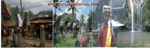 Jasa Tour Guide HPI TANA TORAJA