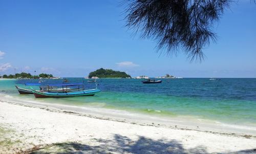 Tour & Travel Agent Belitung
